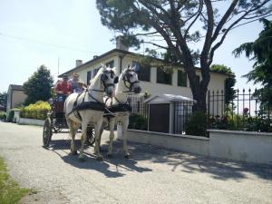La Siesta - Villafranca di Verona