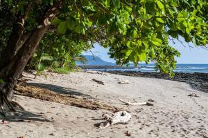 Latitude 10 Exclusive Beach Resort, Hotely  Pláž Santa Teresa - big - 19