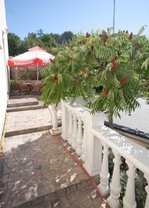 Guesthouse Villa Adria, Affittacamere  Malinska - big - 38