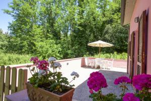 Appartamento Natura & Relax - AbcAlberghi.com