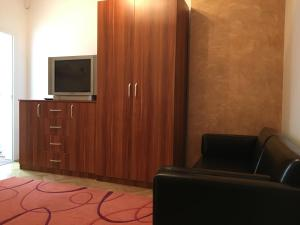 Carpathian Apartment, Apartmány  Brašov - big - 25