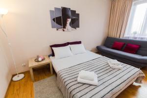 Apartment Vydoma, Appartamenti  Mosca - big - 29