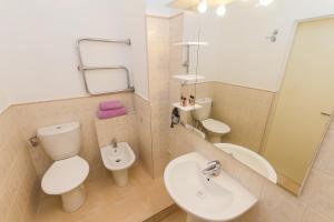 Apartment Vydoma, Appartamenti  Mosca - big - 54