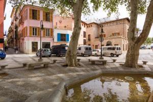 Montmari - Turismo de Interior, Apartmány  Palma de Mallorca - big - 49