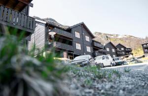 Skarsnuten Apartments - Hemsedal