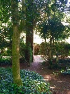 Le Jardin Suspendu B&B, Отели типа «постель и завтрак»  Montfaucon - big - 41