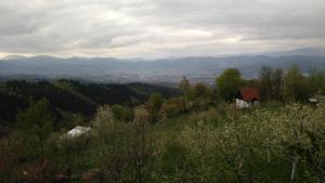 Visoko Vacation Home, Holiday homes  Visoko - big - 12