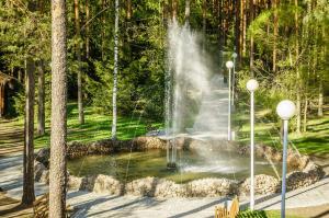Raivola, Resort  Roščino - big - 55