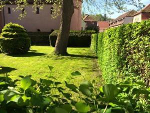 Hôtel Du Herrenstein, Hotely  Neuwiller-lès-Saverne - big - 7