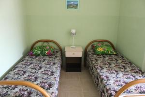 Guest House Olga, Penzióny  Lazarevskoje - big - 22