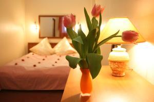 Shelestoff Hotel - Lëgkovo