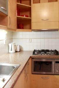 Residence Bílkova, Apartmány  Praha - big - 7
