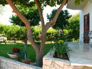 Villa Naranca, Apartments  Trogir - big - 13