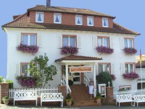 Hotel Irene - Höchst im Odenwald