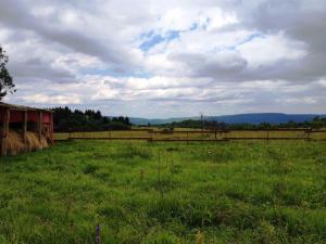 Kolhidskie Vorota Usadba, Farm stays  Mezmay - big - 19