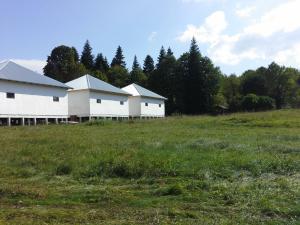 Kolhidskie Vorota Usadba, Farm stays  Mezmay - big - 260