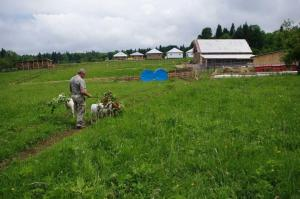 Kolhidskie Vorota Usadba, Farm stays  Mezmay - big - 122