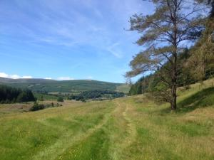 Hearthstanes Steading, Holiday homes  Polmood - big - 15