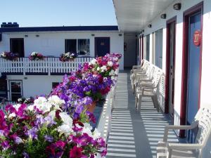 Buccaneer Inn, Motelek  Nanaimo - big - 41