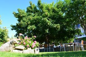 Sole E Monti, Hotels  Quenza - big - 32