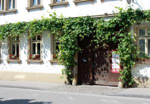 Vivo-Vino - Heßheim