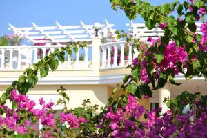obrázek - Honeymoon Villa