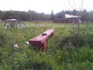 Kolhidskie Vorota Usadba, Farm stays  Mezmay - big - 174