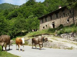 Agriturismo Le Fratte - AbcAlberghi.com