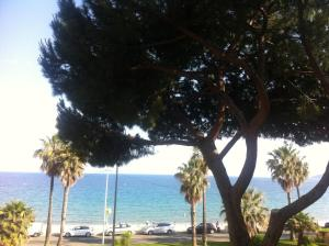 Cannes Terrace Beach Front & Sea view, Apartments  Cannes - big - 58