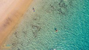 Santana Beach (4 of 81)