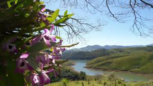 Pousada Canto do Lago, Гостевые дома  Пиракая - big - 16
