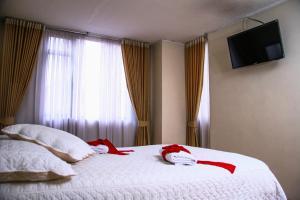 Hotel Chambu Plaza, Hotels  Pasto - big - 3