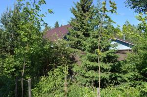 House u Chetyrekh Ozer - Lebyazh'ye
