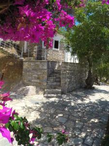 Villa Ariadni, Апартаменты  Скиатос - big - 46