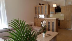 Apartament Hanza