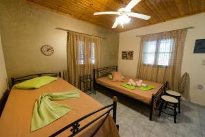 Villa Dimitris Apartments & Bungalows, Apartmány  Lefkada - big - 5