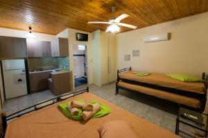 Villa Dimitris Apartments & Bungalows, Apartmány  Lefkada - big - 8