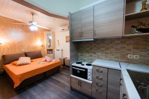 Villa Dimitris Apartments & Bungalows, Apartmány  Lefkada - big - 44