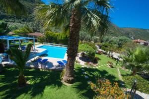 Villa Dimitris Apartments & Bungalows, Apartmány  Lefkada - big - 56