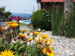 Casa D`Auleira, Farm stays  Ponte da Barca - big - 1