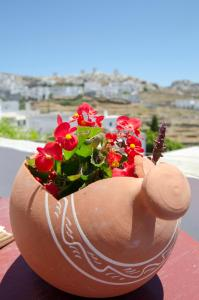 Hostels e Albergues - Pension Ilias