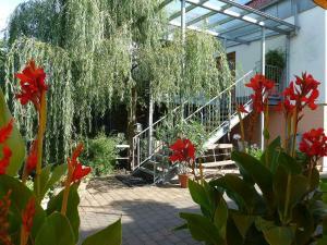 Landgasthof Steller, Hotels  Gilserberg - big - 2