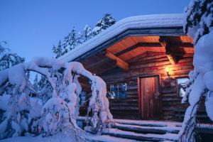 Kakslauttanen Arctic Resort (4 of 123)