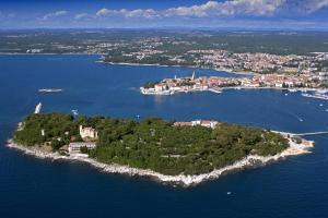 Istria Holiday Home Villa Adriatic, Vily  Kaštelir - big - 42