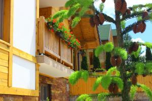 Villa Natural Wood, Ferienwohnungen  Zlatibor - big - 38