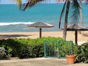 One-bedroom Oceanfront Villa at Rio Mar, Апартаменты  Рио-Гранде - big - 45
