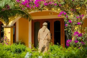 El Encanto Inn & Suites, Hotely  San José del Cabo - big - 61
