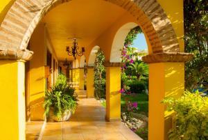 El Encanto Inn & Suites, Hotely  San José del Cabo - big - 43