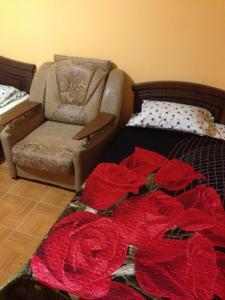 Guest House Arisha - Defanovka