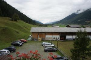 Hotel Alpenhof, Hotely  Oberwald - big - 26